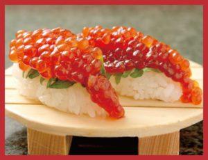 258-ken-masu-suji-ko-nigiri